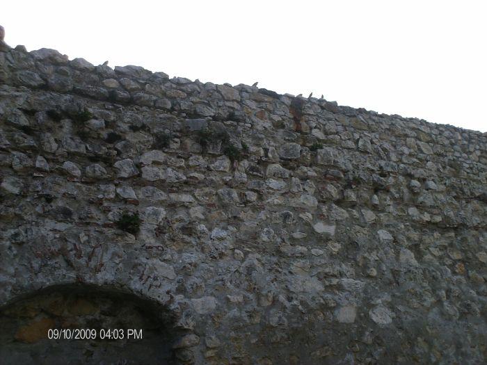 Zidul. Şi aripile